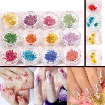 12pcs Each Box Dried Dry Flower Uv Gel Acrylic False Nail Art