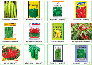 all variety of hot pepper seeds(Green/yellow/Red)