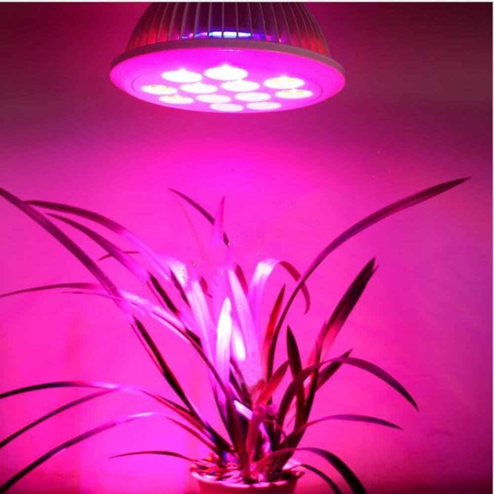 Wei-d 12W Real Grow Light ,120 Degree LED Grow Light Bulbs for Greenhouse, Bonsai and Hydroponic Garden, Full Spectrum Indoor Garden Growing Lamps with Wide Area Coverage , 12W