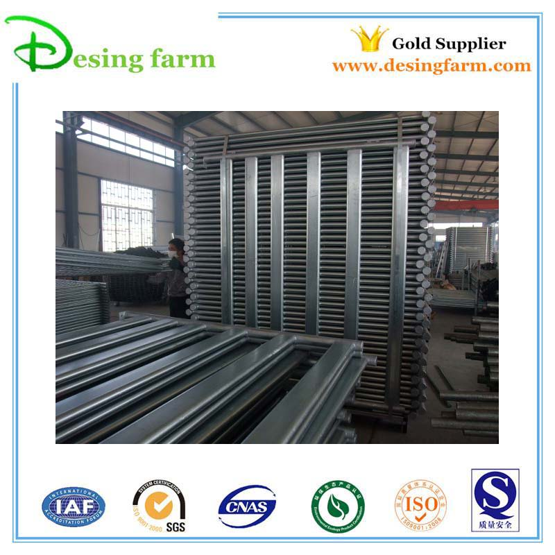 galvanized metal sheep weighing scales factory price