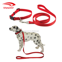 Eco-friendly Nylon Webbing Dog Collars and Leads For Puppy