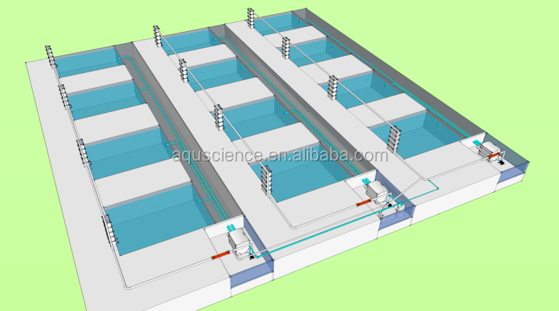 Easy to operater fish farm equipment for RAS