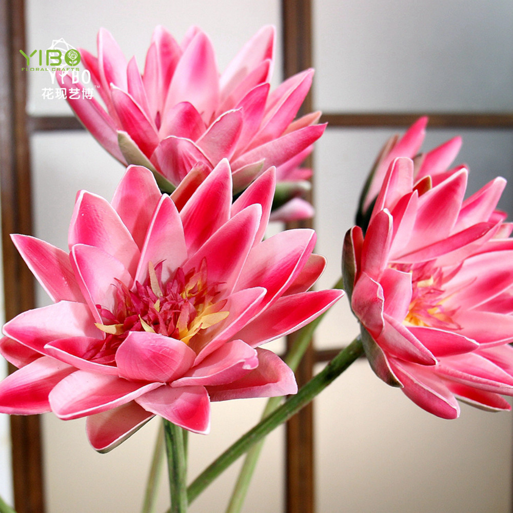Water Lily, Water Lily Suppliers and Manufacturers at Alibaba.com