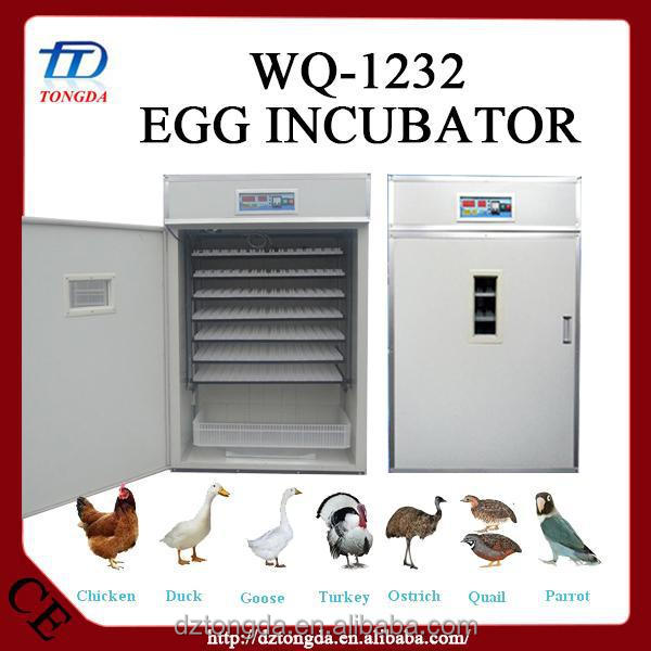 Multifunctional glass door animal incubator with low price