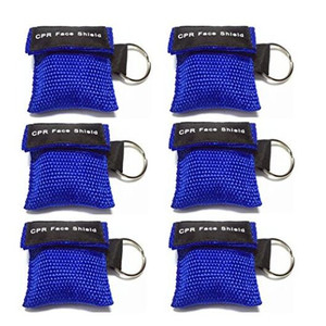 CPR Key Chain Face Shield Set in Nylon Web Protective Holder
