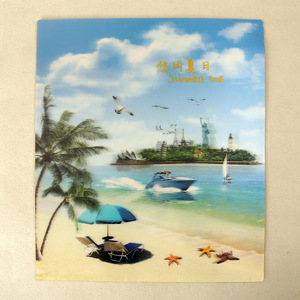 Beautiful 3d picture for printing pp plastic lenticular poster
