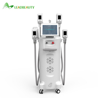 popular cryolipo fat freezing cool body sculpting cryolipolysis machine for sale/cryolipolysis machine price