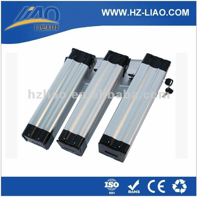 LIAO Electric battery lifepo4 48v OEM design 10Ah 20Ah 24Ah lifepo4 battery pack