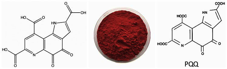 SOST China Manufacturer Supply Pyrroloquinoline Quinone PQQ Powder