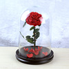 RED preserved rose in glass dome
