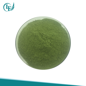 On sale!!10:1;20:1 Organic health Spinach Extract Powder