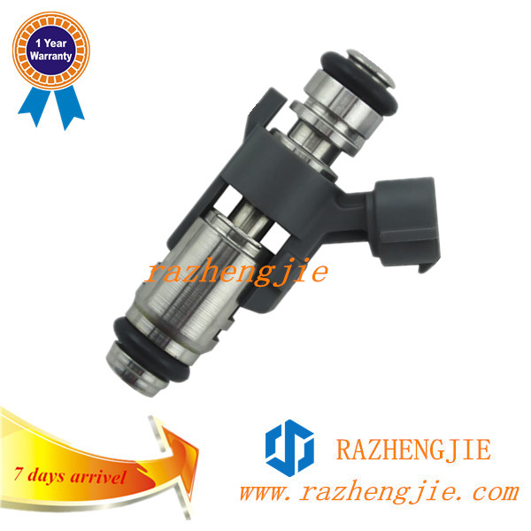 High Quality QQ 0.8m with 2 hole Fuel Injector /Injector Nozzle IPM018