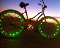 Outdoor Bike Bicycle 20 LEDs Wheel Spoke Steel Wire Cycling Flash Light