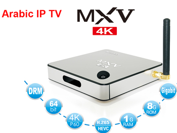 Android Amlogic S905 Arabic Iptv Arabic Tv Live Channels Arabic Tv Box  Arabic Ip Tv Receiver - Buy Ip Tv,Arabic Iptv Receiver,Tv Box Product on