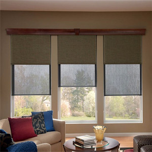 Double sunshades window day night roller blind with blackout fabrics