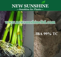 IBA 3-Indolebutyric acid For rooted plant cuttings