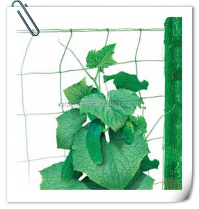 agriculture climbing net / melon support net / extruded plastic net