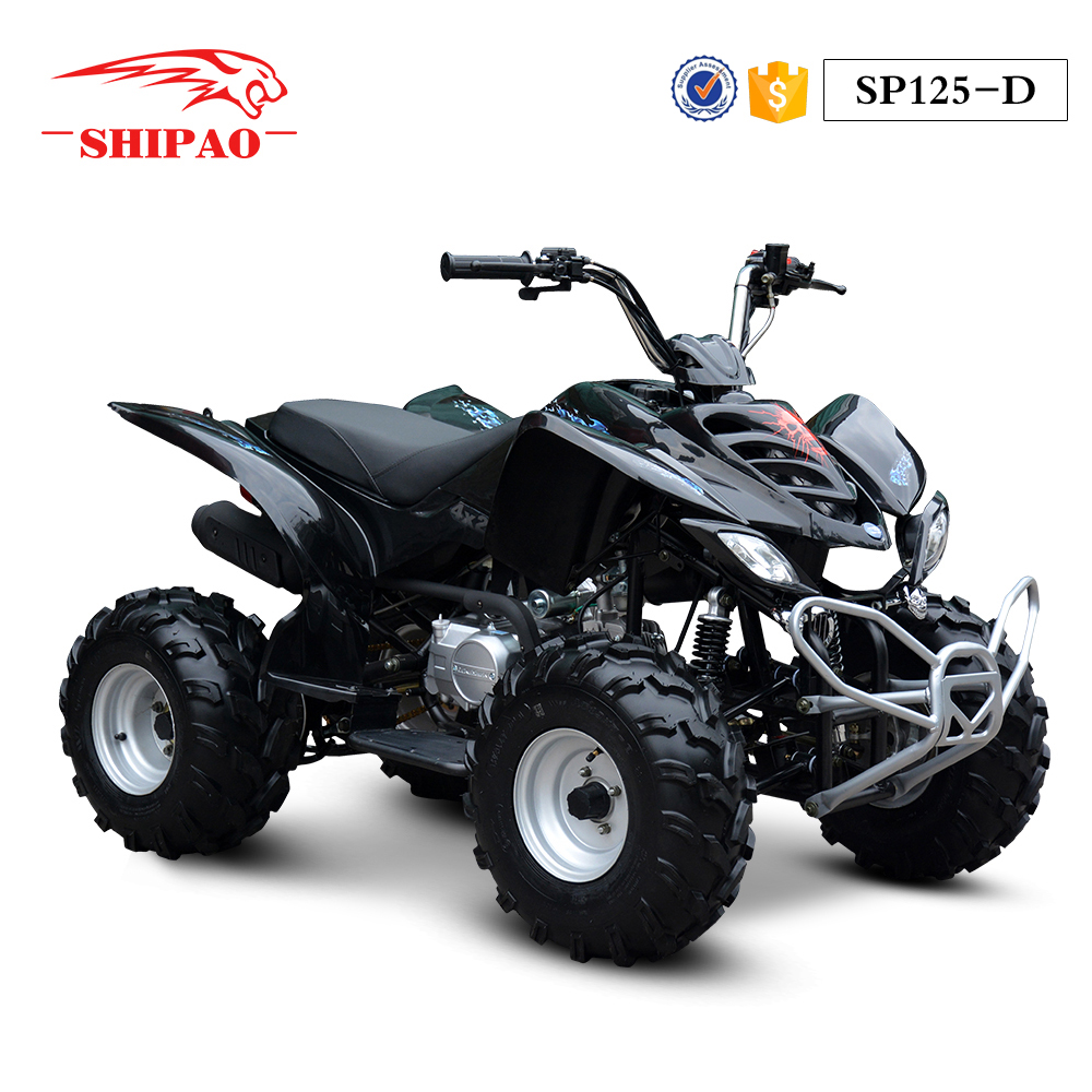 SP125-D Shipao atv transmission parts