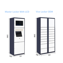 Intelligente Pacchetto Locker OEM/ODM /Smart Intelligente Postale/Consegna/Armadietto/Box con Touch LCDScreen/aeroporto/Supermercato/appartamento