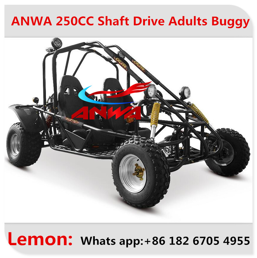 Chinese EPA EEC cheap price approved dune buggy 250cc for kids and adults