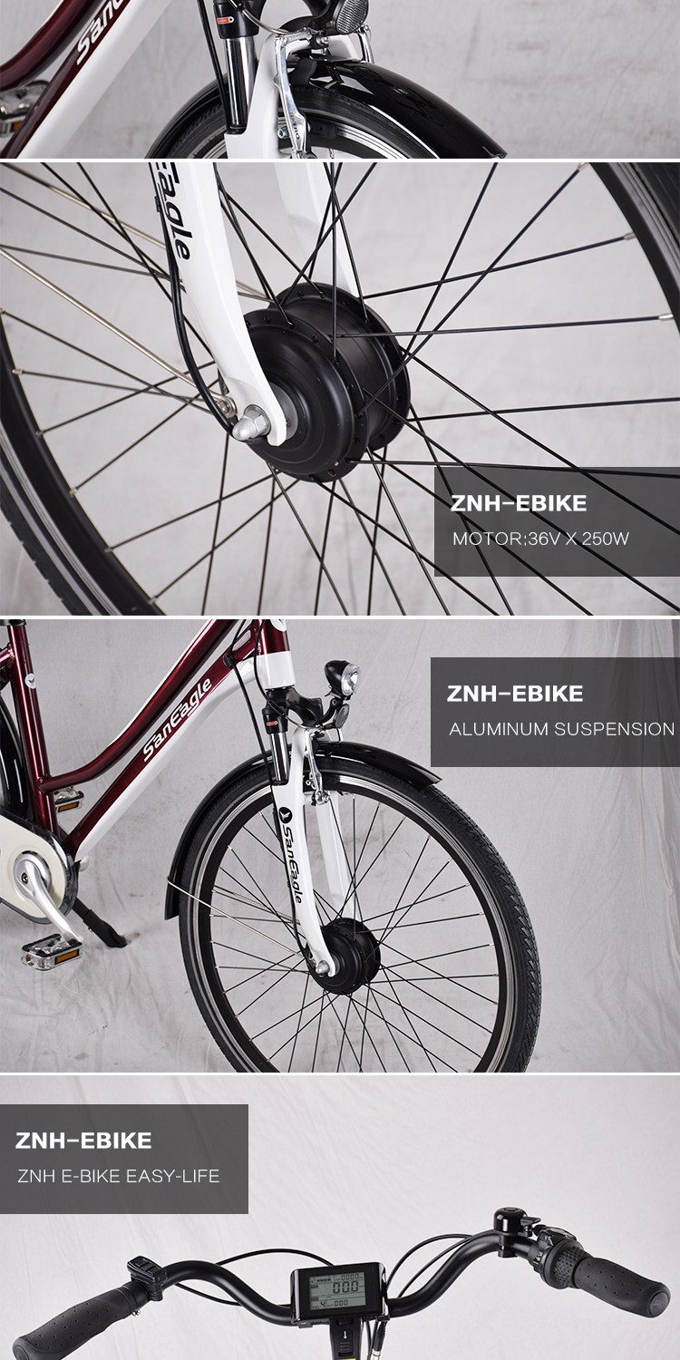 ZNH-E-1708 Saneagle electric bike