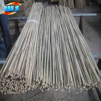 Bamboo cane for garden decoration