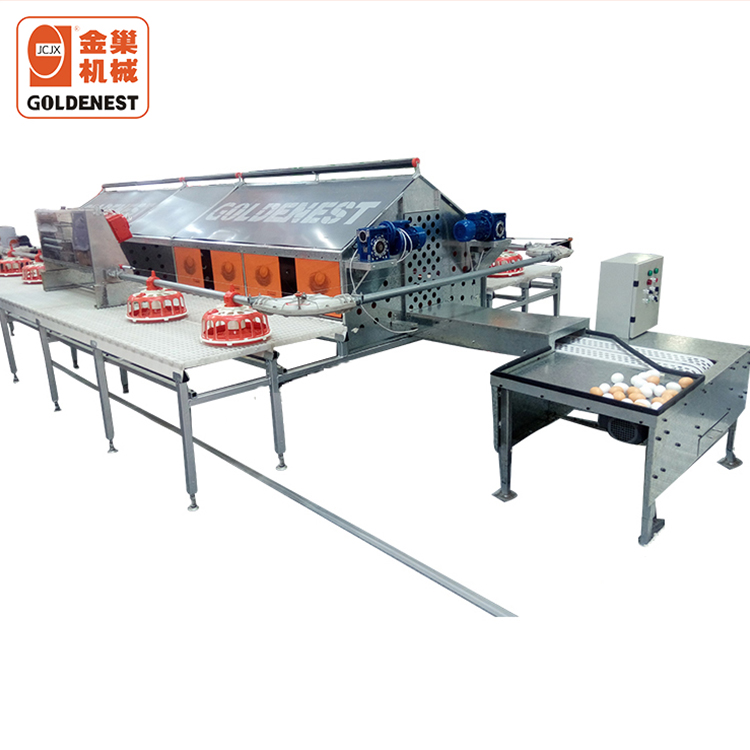 Goldenest Automatic egg collect system for layer chicken parent house poultry nest poultry farm equipment