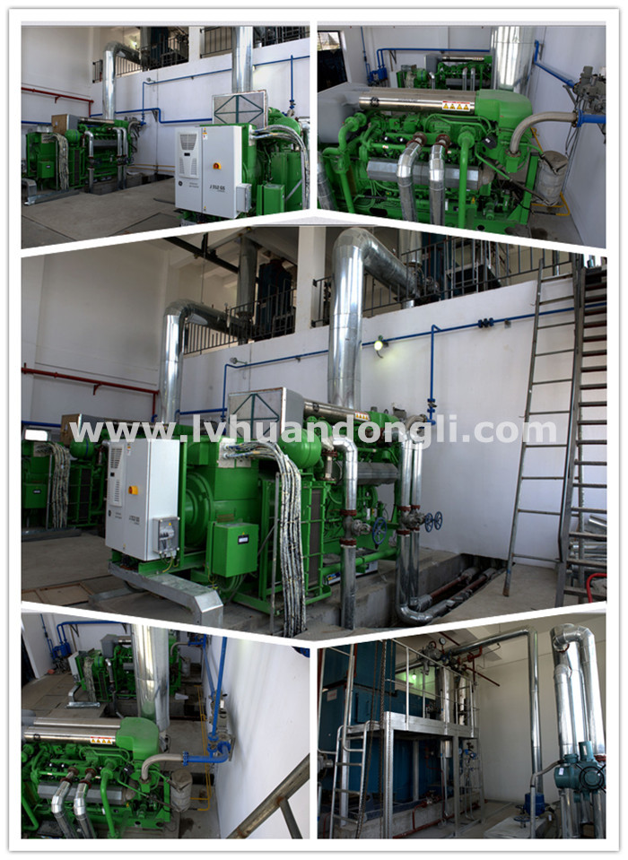 Mini Gas Plant : Eco power generator cogeneration unit chp combined heat