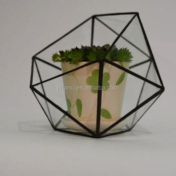 Home Design Clear Glass Terrarium Succulent Plants Greenhouses Buy