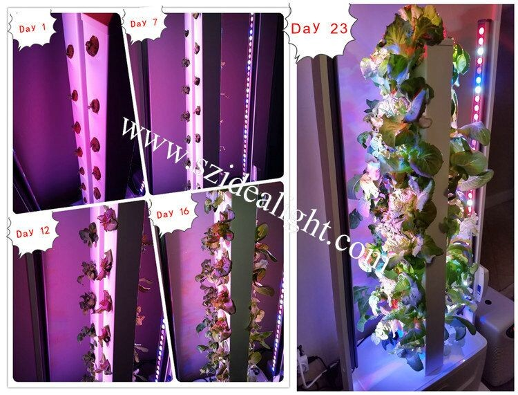 Idea Light Factory Hydroponic Led Grow Lights 2ft 3ft T8 T5 Diy Spectrum