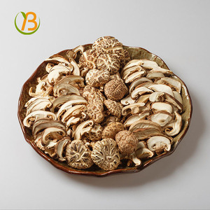 dried oyster mushroom for sale oyster mushrooms 1k/bulk dried shiitake mushrooms/dried mushroom champignon