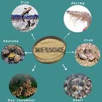 AQUA-IMMUNE04 PANGOO , Immune polysaccharide for aquatic livestock , fish , shrimp , sea cucumber , shell , abalone