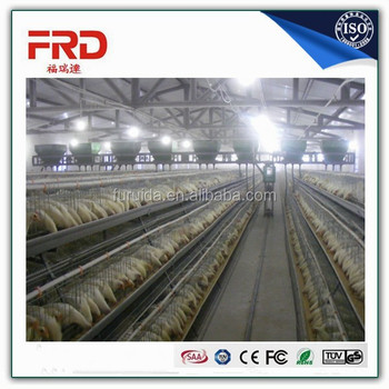 Factory Direct Economical Design Layer Chicken Cage