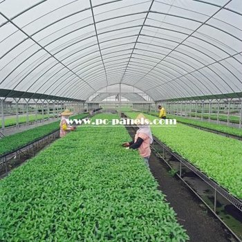 clear corrugated plastic roofing sheets for greenhouse