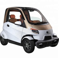 EU Approval 2 Seater Family Use 4 Wheel Electric Mini Car with Air-conditioning