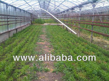 agricultural land and agricultural complex is sold near to Tbilisi