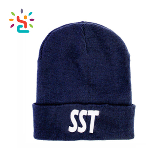 Custom Brand Beanies Ski knitted hats Cheap winter cap With embroidery Logo 100% Acrylic navy blue the beanie hat