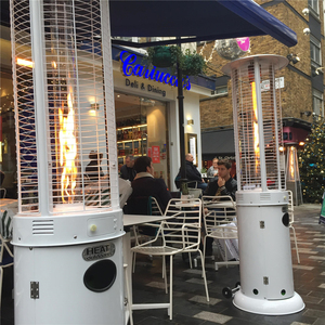 New great price elegant factory direct outdoor flame gas patio heater with remote control