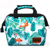 Disposable Tote Food Insulated Kids Lunch Box Cooler Bag