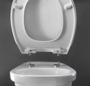 Phenomenal Chair Toilet Seat Chair Toilet Seat Suppliers And Short Links Chair Design For Home Short Linksinfo