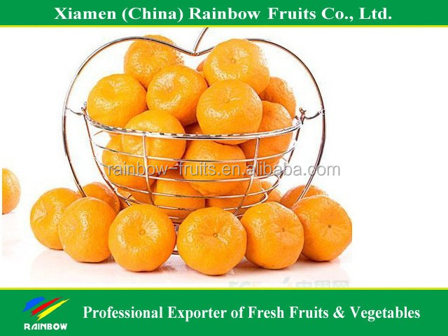 Chinese Nanfeng Baby Mandarin with Own Orchard & Factory & competitive price