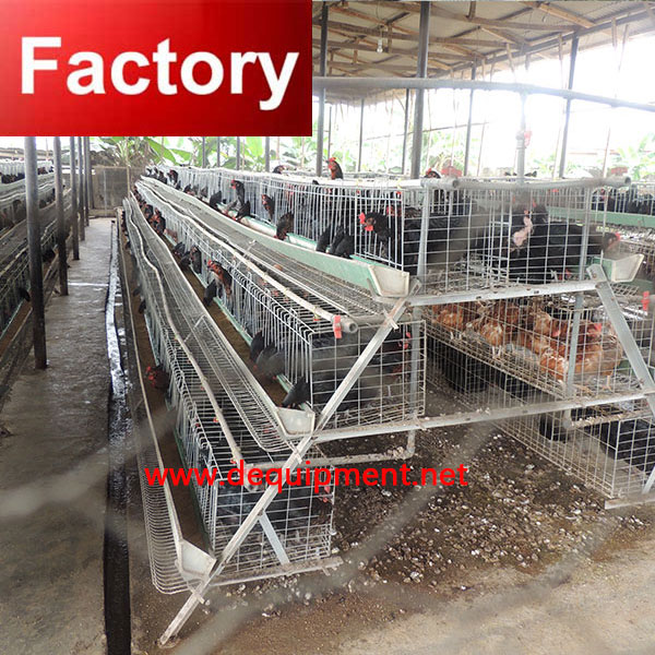Best seling ladder type chicken cage guangzhou for wholesales