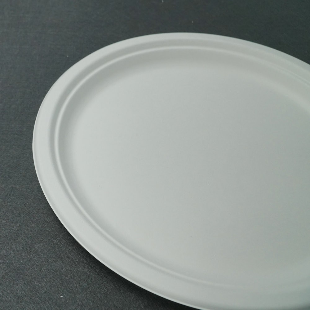 Compostable Hot-Selling Biodegradable Tableware