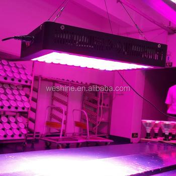 800 watt led grow light for plant grow lighting buy led. Black Bedroom Furniture Sets. Home Design Ideas