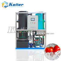 Tube Ice Plant Hollow Tube Ice Machine Manufacture