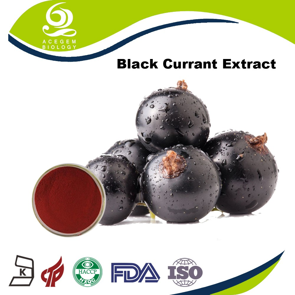 China Supplier Raw Materials Blushwood Berry Extract Of ...