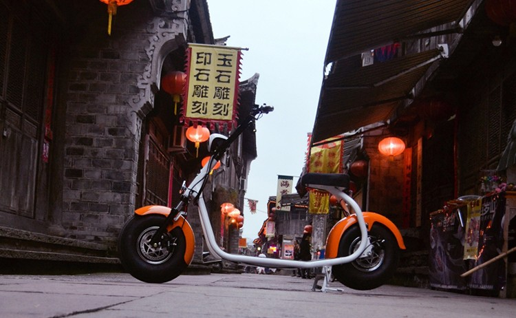 Hot sale fat tire electric motor scooter with CE charger