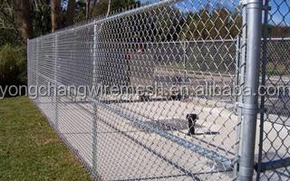Wire Mesh Fences