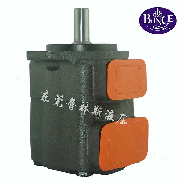 Blince hydraulioc pump 20V 25V 35V 45V type hydraulic pump