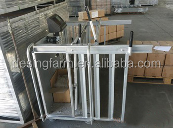 Electric Hot Dip Galvanized Sheep Crate For Weighing